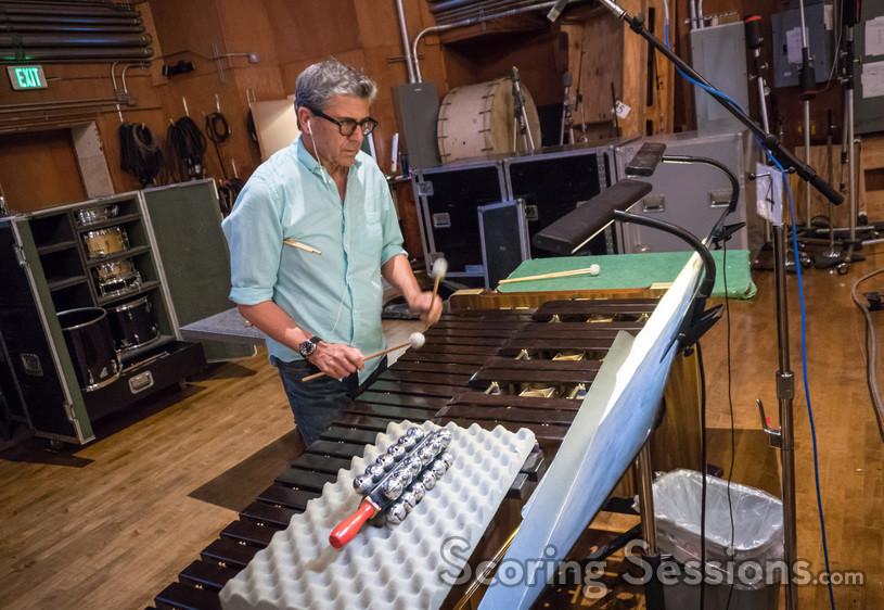 Percussionist Bob Zimmitti performs on marimba
