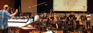Nick Glennie-Smith conducts the orchestra on <i>Beverly Hills Chihuahua</i>