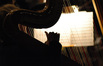 Gayle Levant plays harp on <i>Couples Retreat</i>