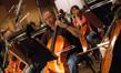 Cellist Steve Erdody