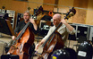 The basses