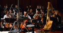 The cellos, basses, and harp