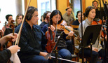 The violins and violas