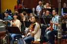 The violins