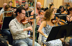 The violin section