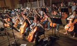 The cello section performs