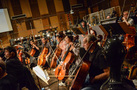 The cello and bass sections