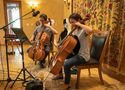 The cellos