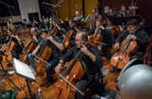 The cello and basses