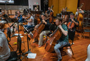 The viola, cello, and bass sections