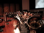 The large brass section