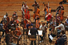 The 40-piece string section