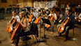 The cellos and basses