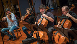 The viola and cello sections perform