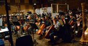 The extensive cello section