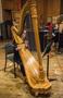 Harpist Marcia Dickstein performs