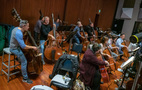 The bass and cello sections