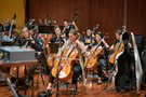 The cello section on <em>Treadstone</em>