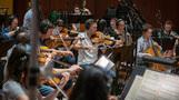 The violas perform