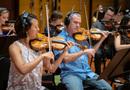 The violins perform